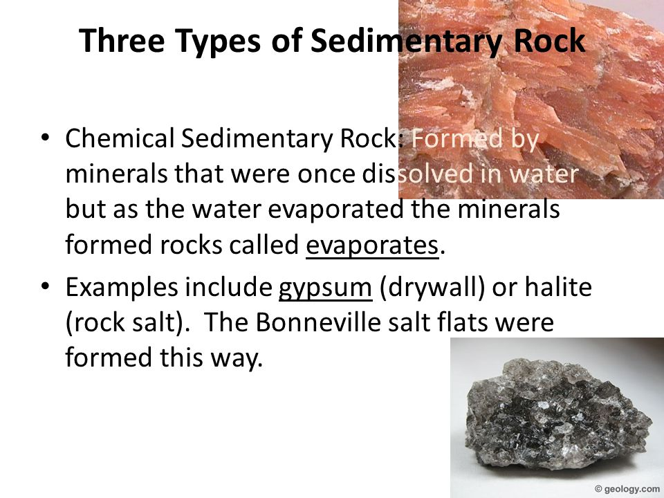 Three Types of Sedimentary Rock