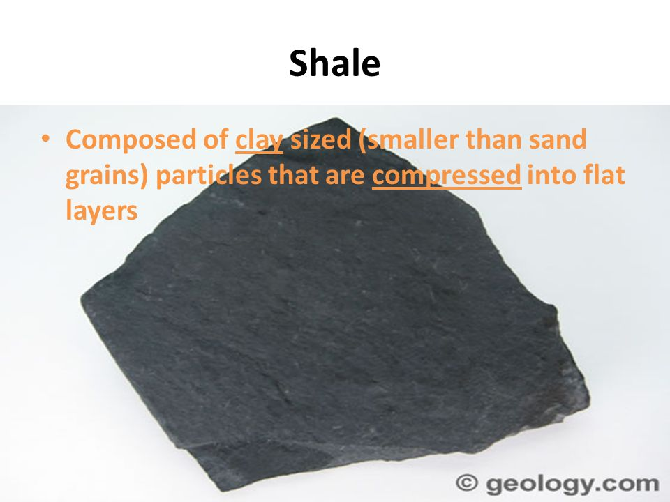 Shale Composed of clay sized (smaller than sand grains) particles that are compressed into flat layers.