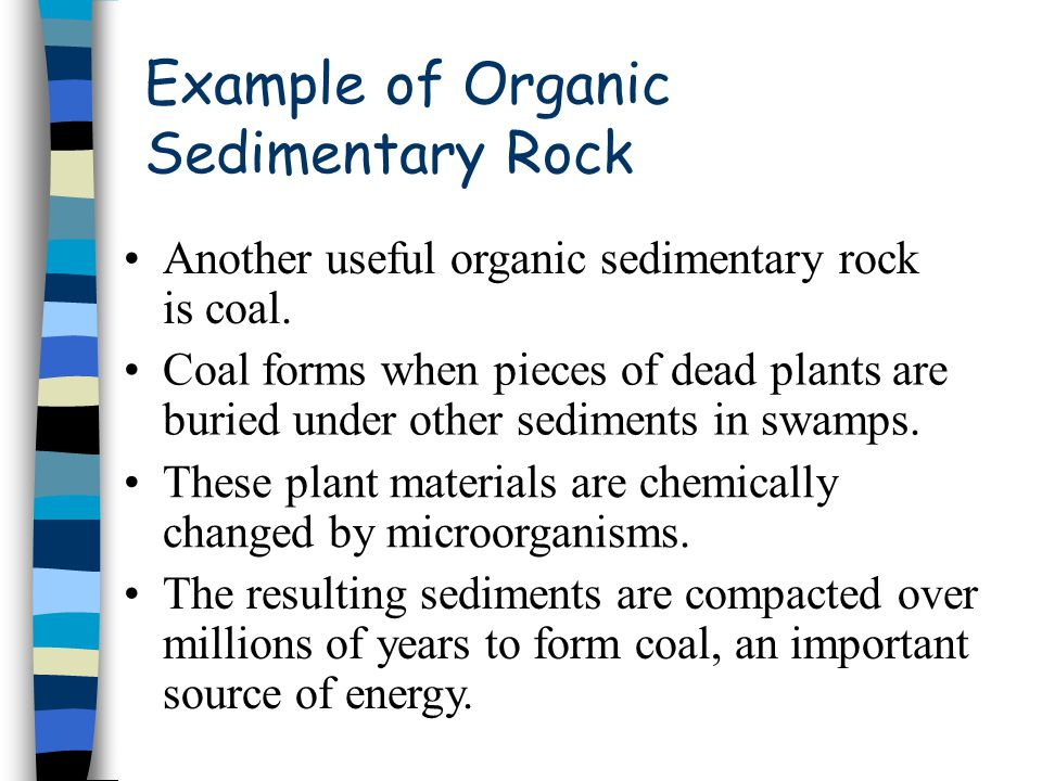 Example of Organic Sedimentary Rock