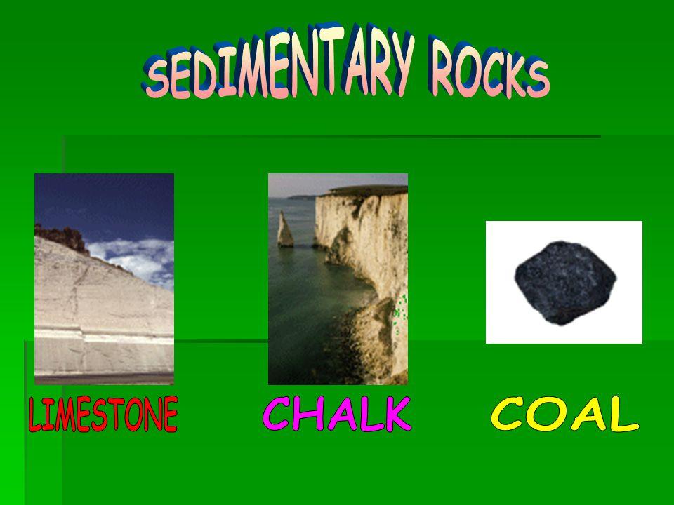 SEDIMENTARY ROCKS LIMESTONE CHALK COAL
