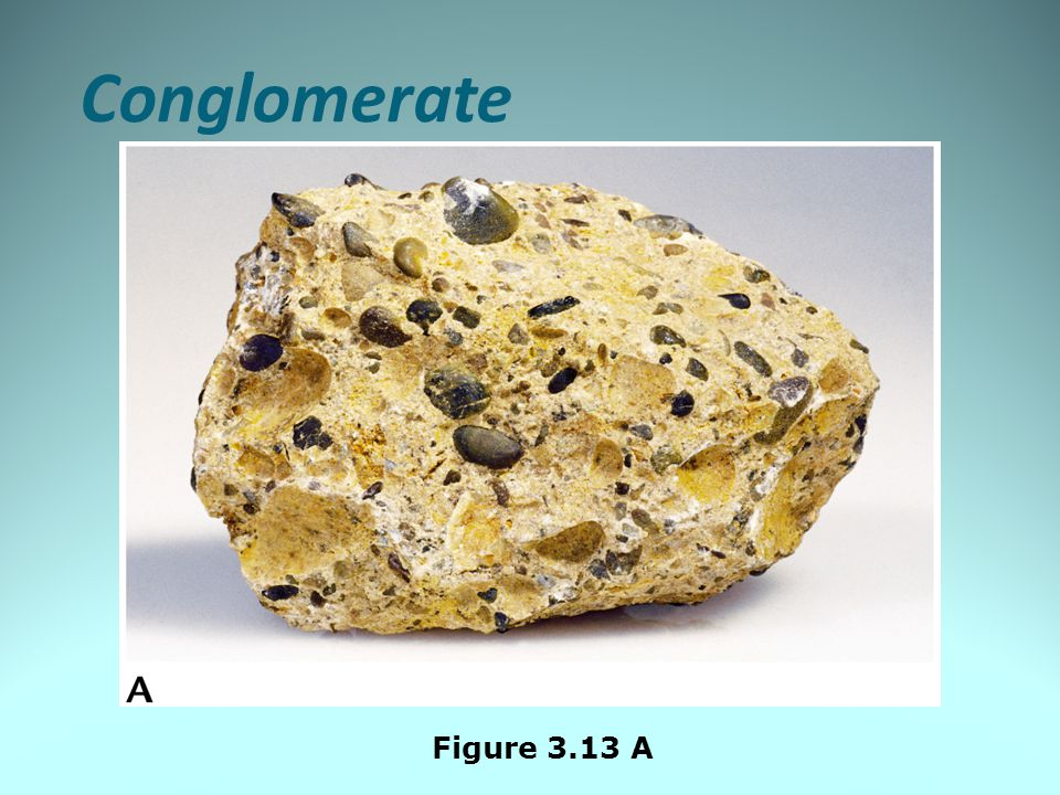 Conglomerate Figure 3.13 A