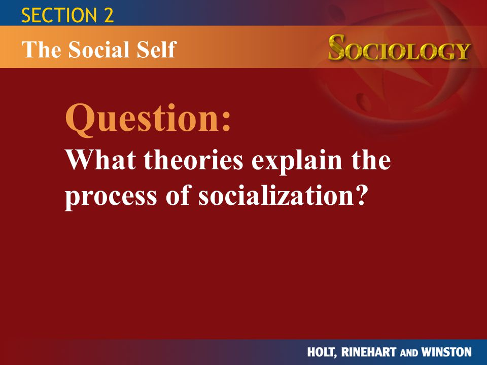 Question: What theories explain the process of socialization