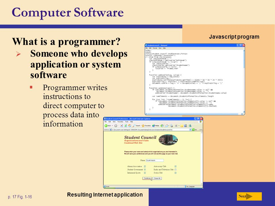 Computer Software What is a programmer
