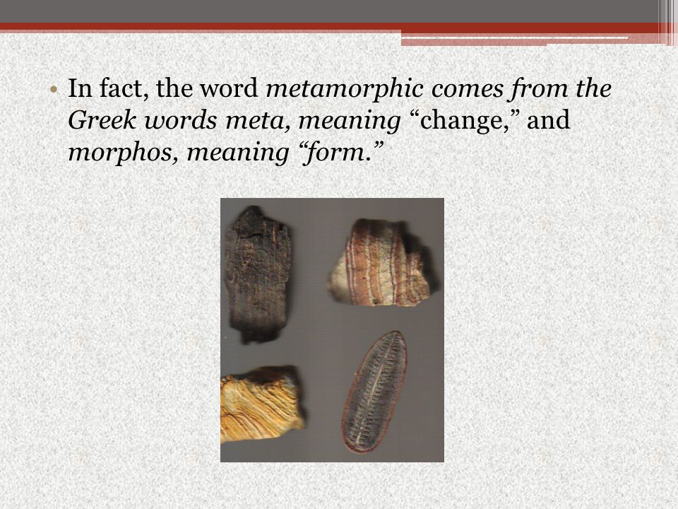 In fact, the word metamorphic comes from the Greek words meta, meaning change, and morphos, meaning form.