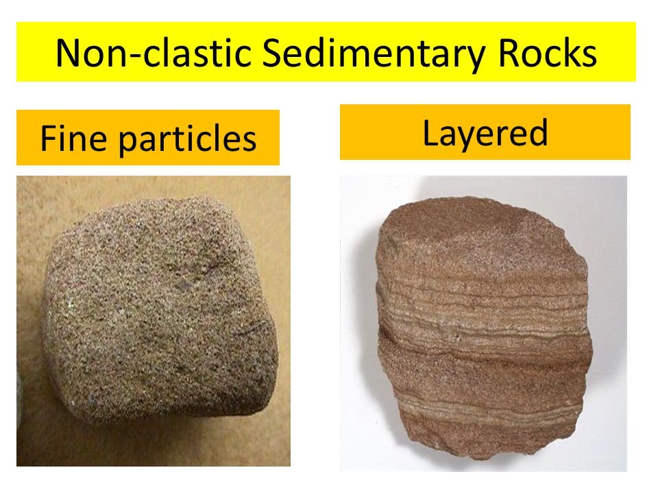 Non-clastic Sedimentary Rocks