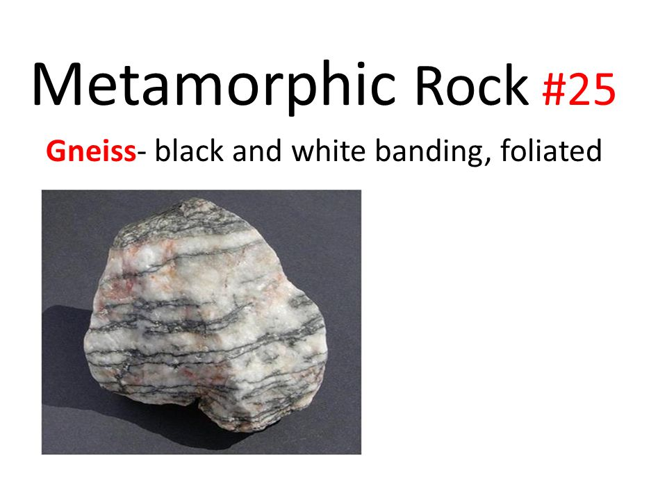 Metamorphic Rock #25 Gneiss- black and white banding, foliated