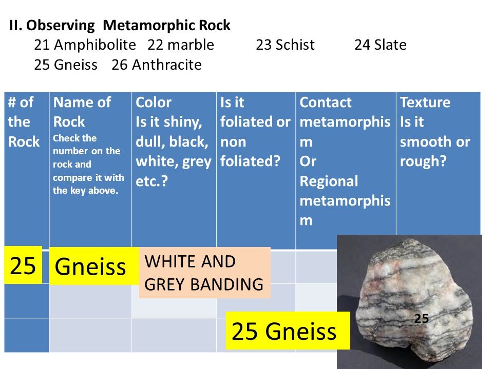 25 Gneiss 25 Gneiss WHITE AND GREY BANDING