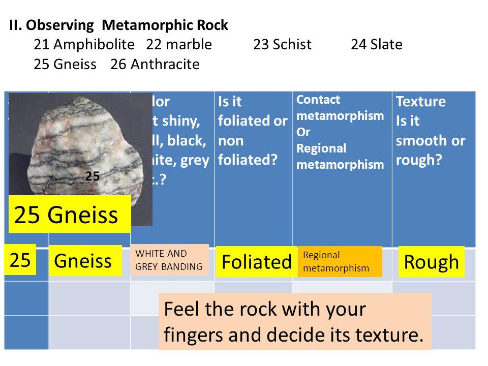 25 Gneiss 25 Gneiss Foliated Rough
