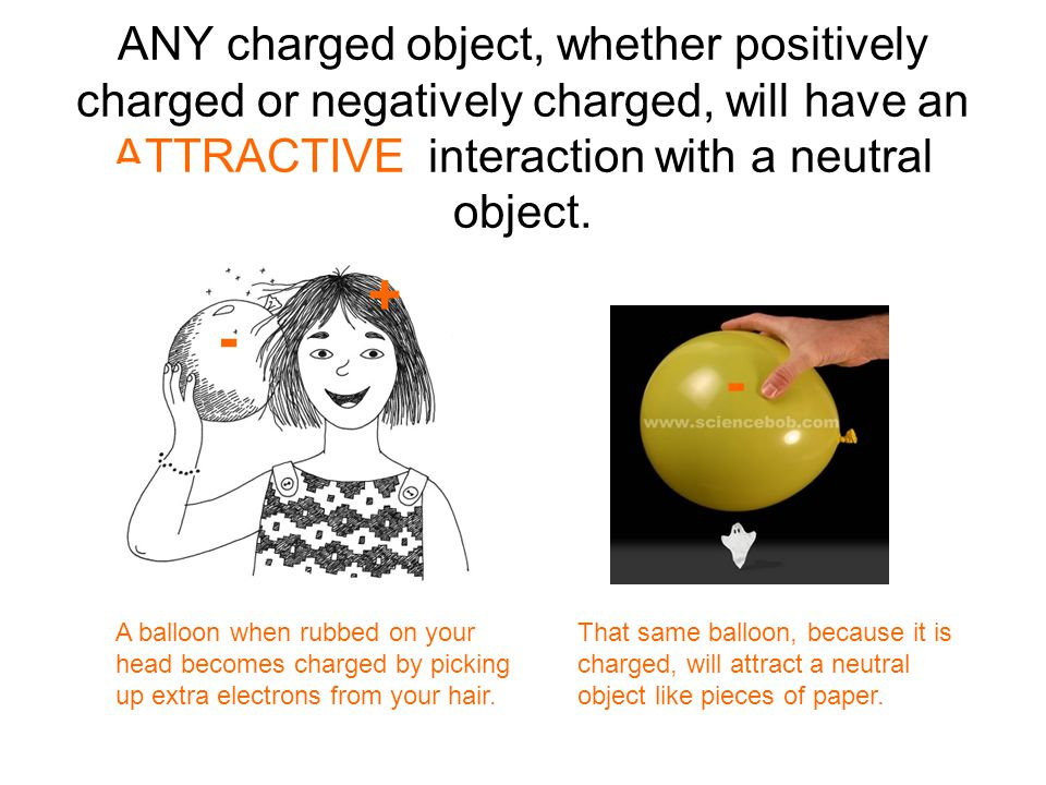 ANY charged object, whether positively charged or negatively charged, will have an ATTRACTIVE interaction with a neutral object.