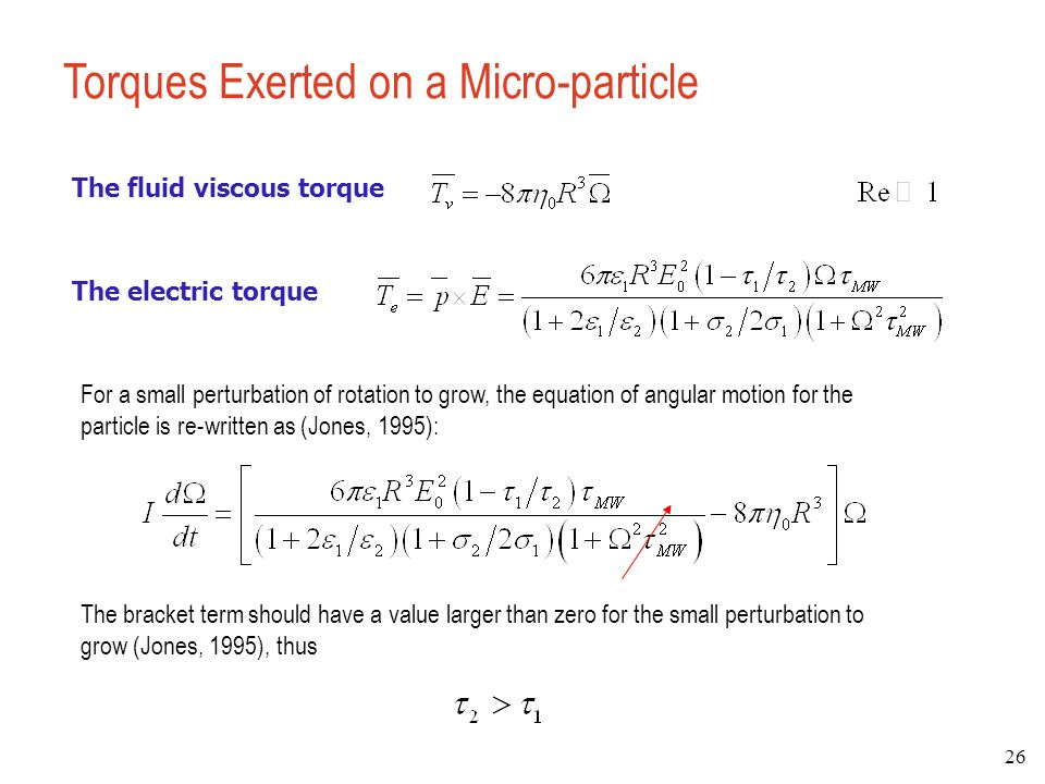 Torques Exerted on a Micro-particle