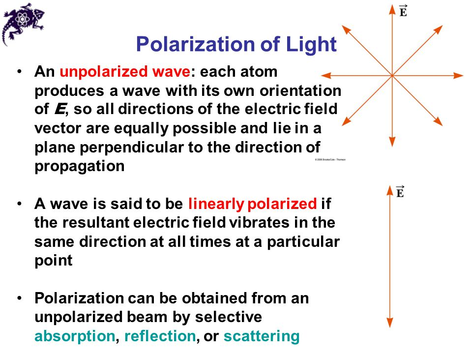 Polarization of Light