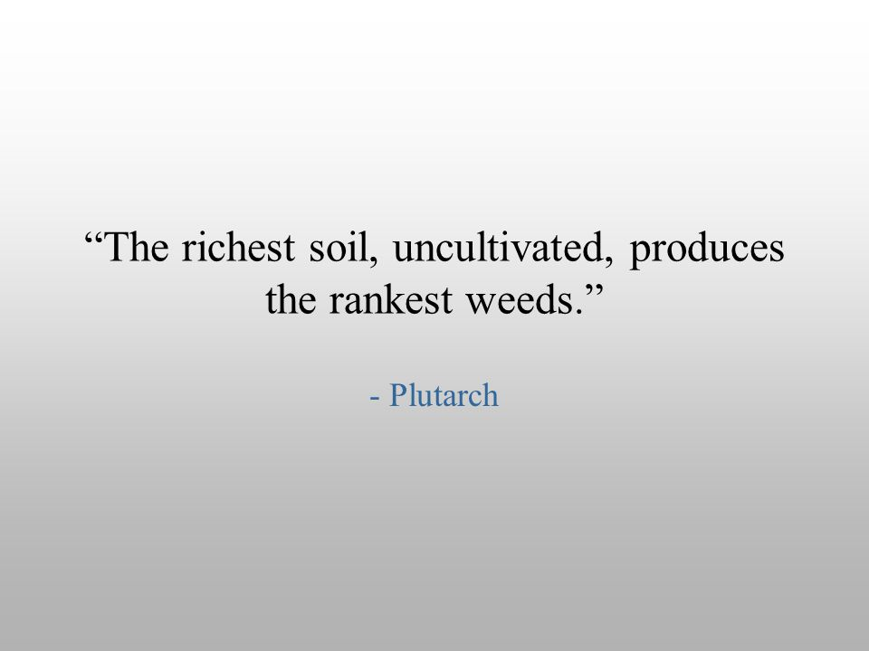 The richest soil, uncultivated, produces the rankest weeds.