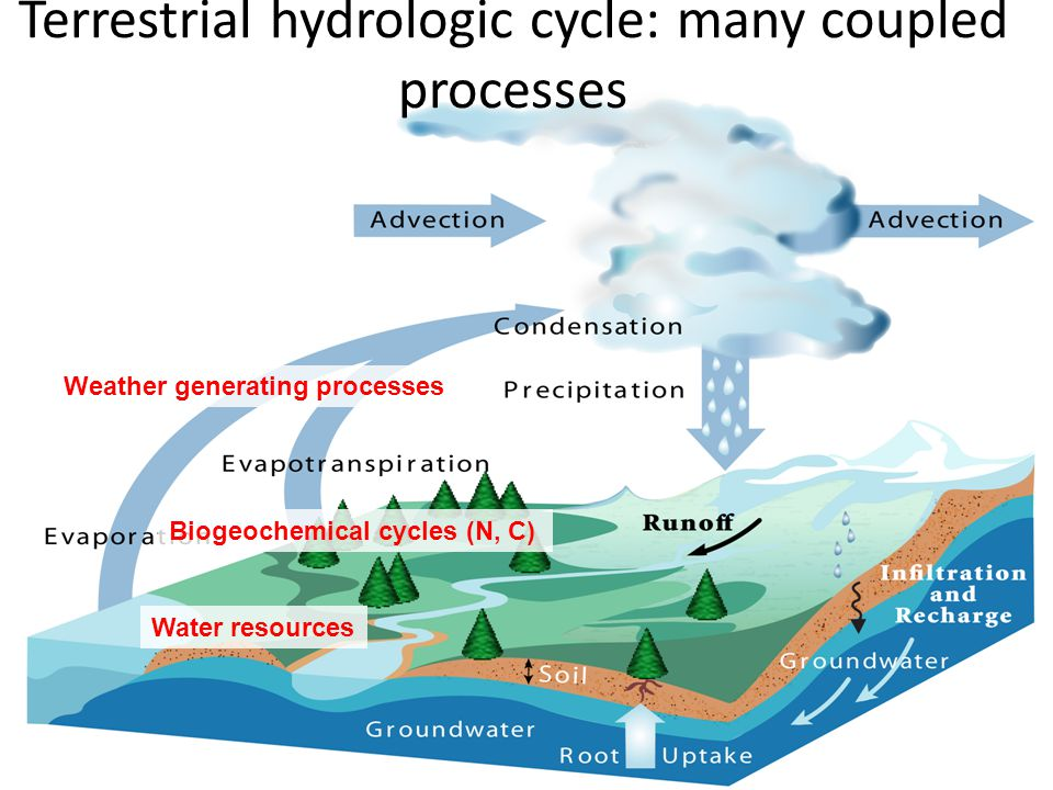 Terrestrial hydrologic cycle: many coupled processes