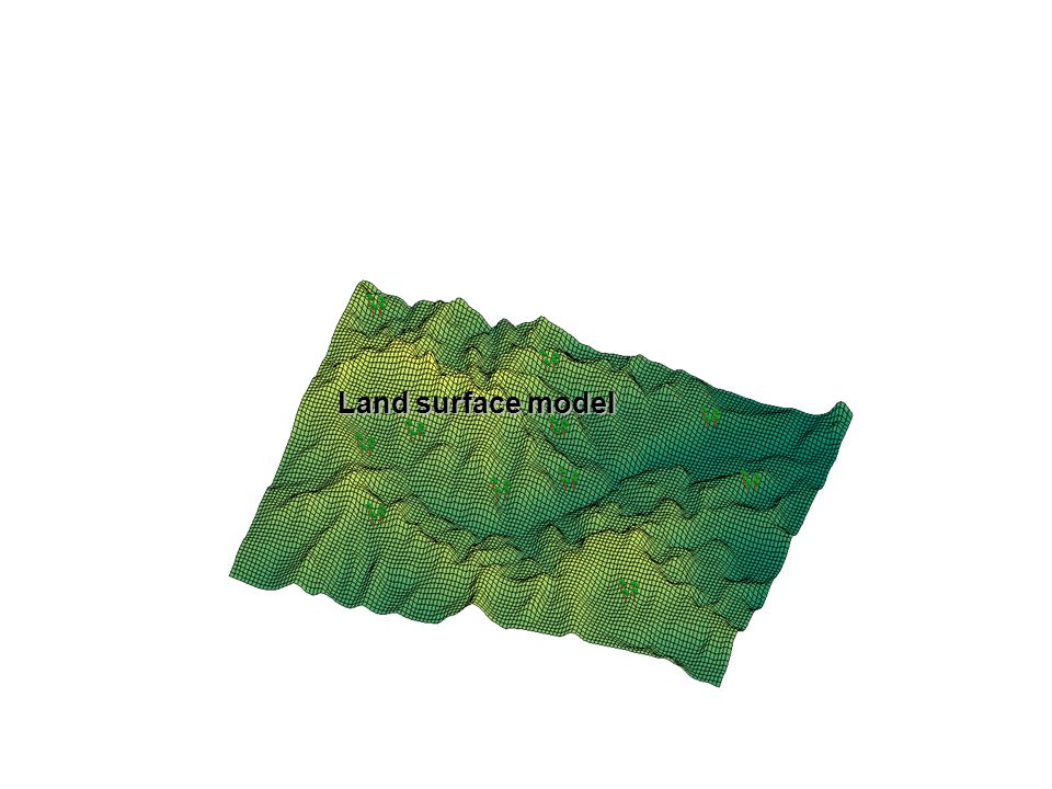 Land surface model