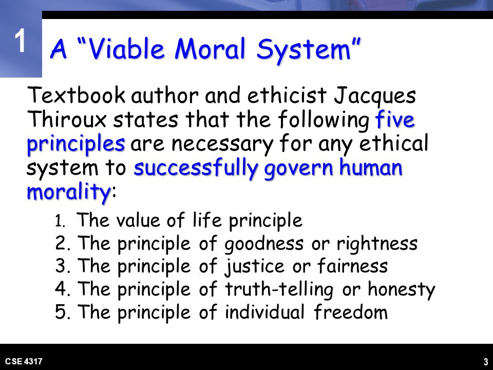 A Viable Moral System