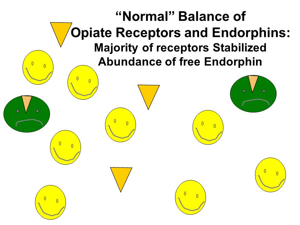 Opiate Receptors and Endorphins: