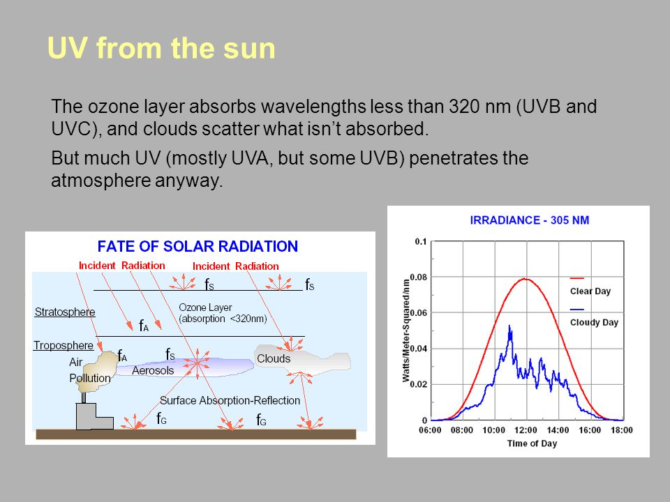 UV from the sun The ozone layer absorbs wavelengths less than 320 nm (UVB and UVC), and clouds scatter what isn't absorbed.