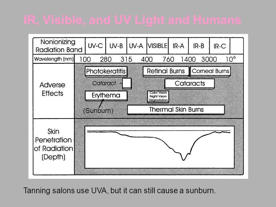 IR, Visible, and UV Light and Humans