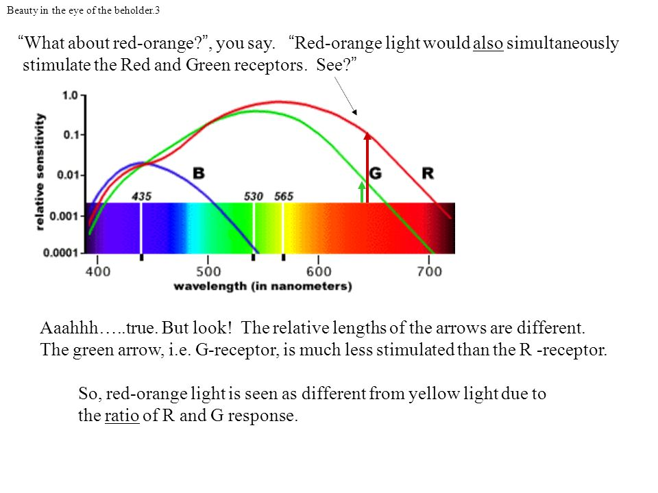 stimulate the Red and Green receptors. See