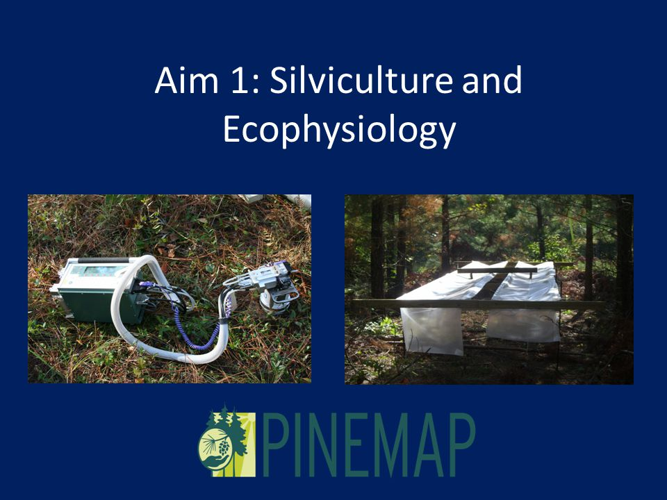 Aim 1: Silviculture and Ecophysiology