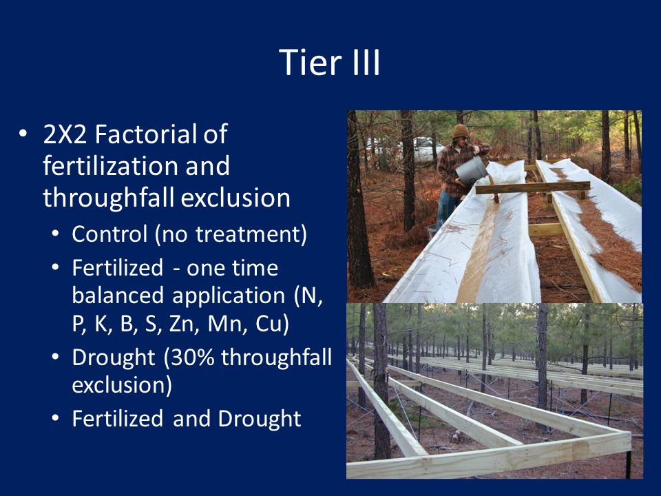 Tier III 2X2 Factorial of fertilization and throughfall exclusion