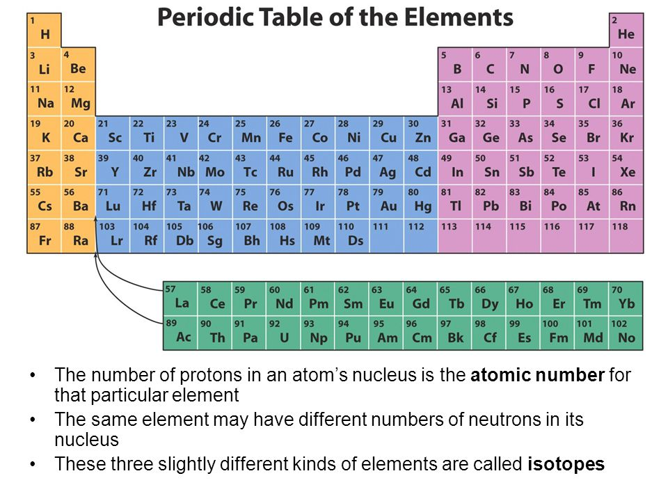 The number of protons in an atom's nucleus is the atomic number for that particular element