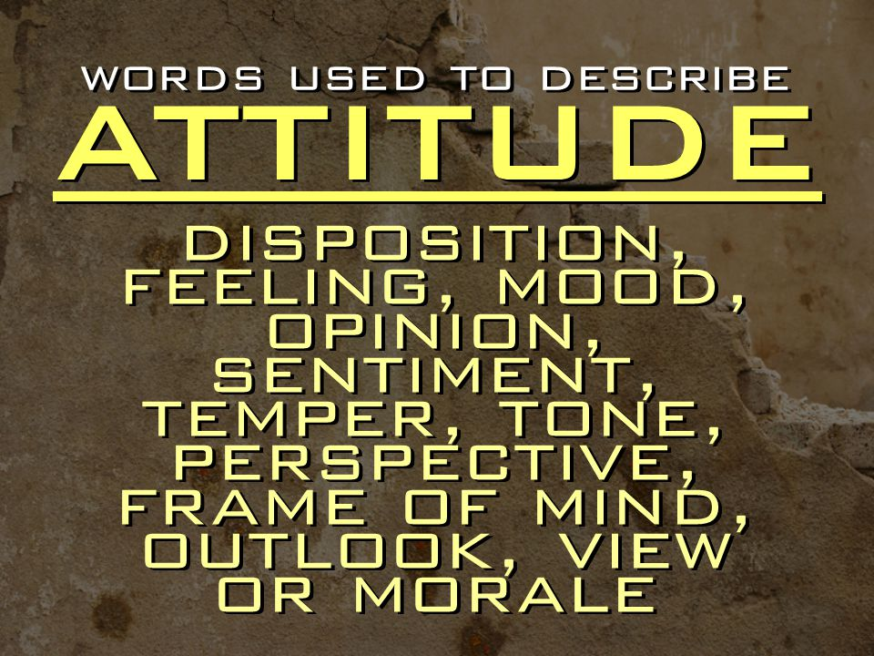 words used to describe ATTITUDE.