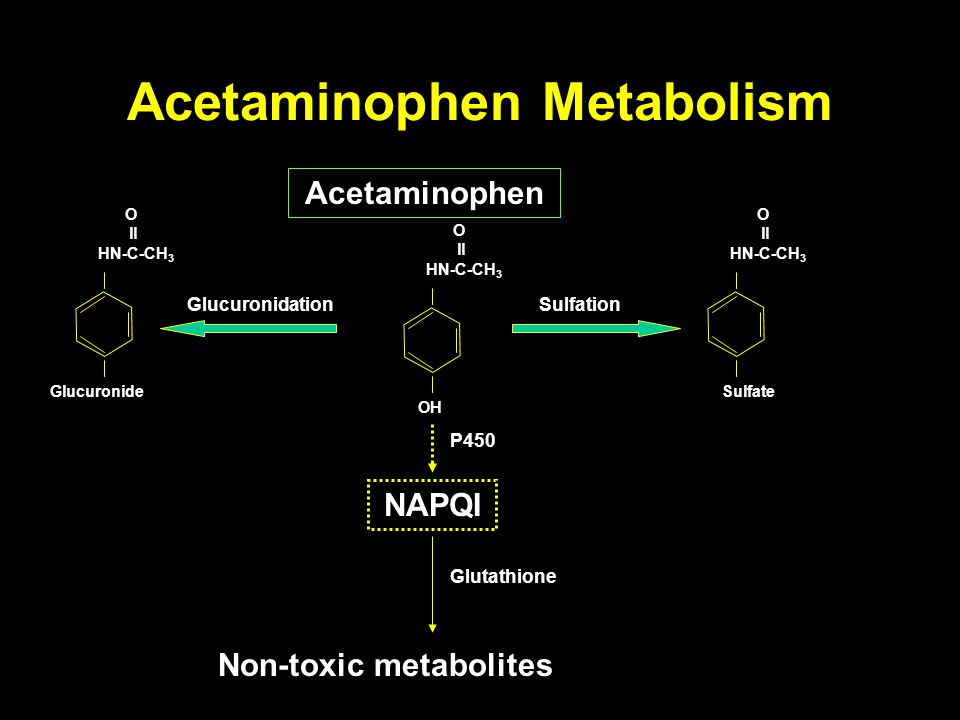 Acetaminophen Metabolism