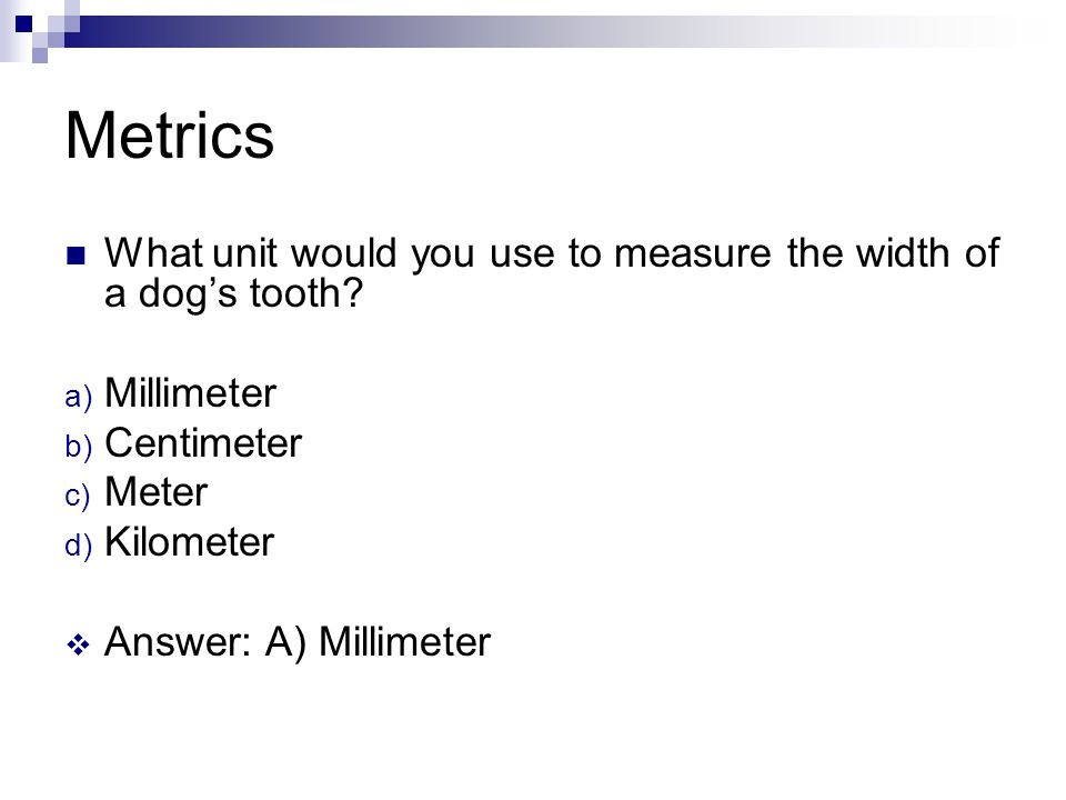 Metrics What unit would you use to measure the width of a dog's tooth