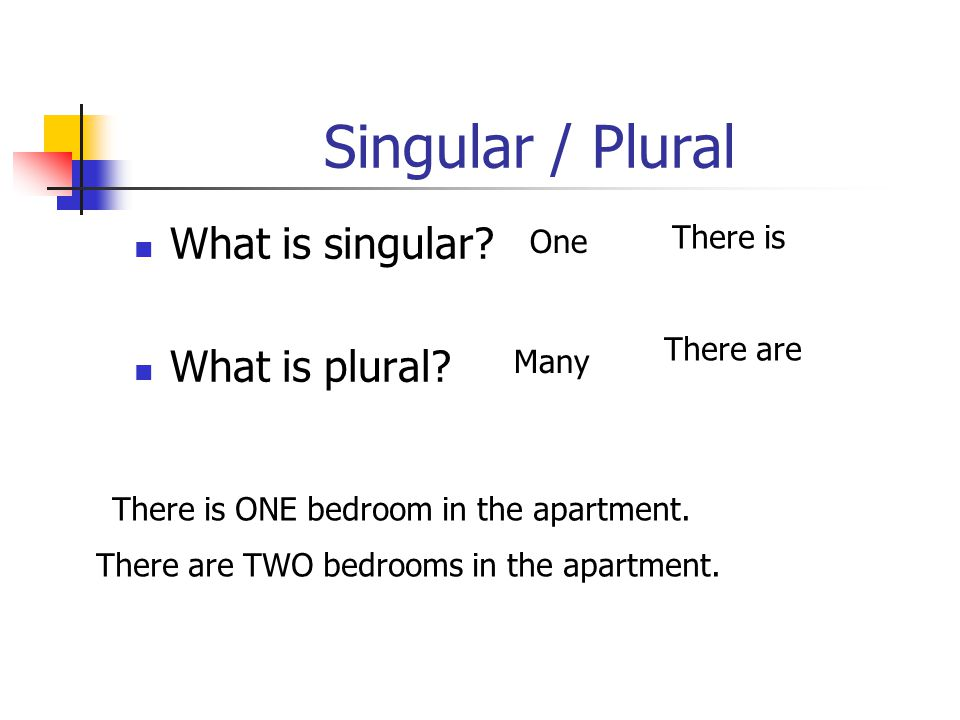 Singular / Plural What is singular What is plural There is One