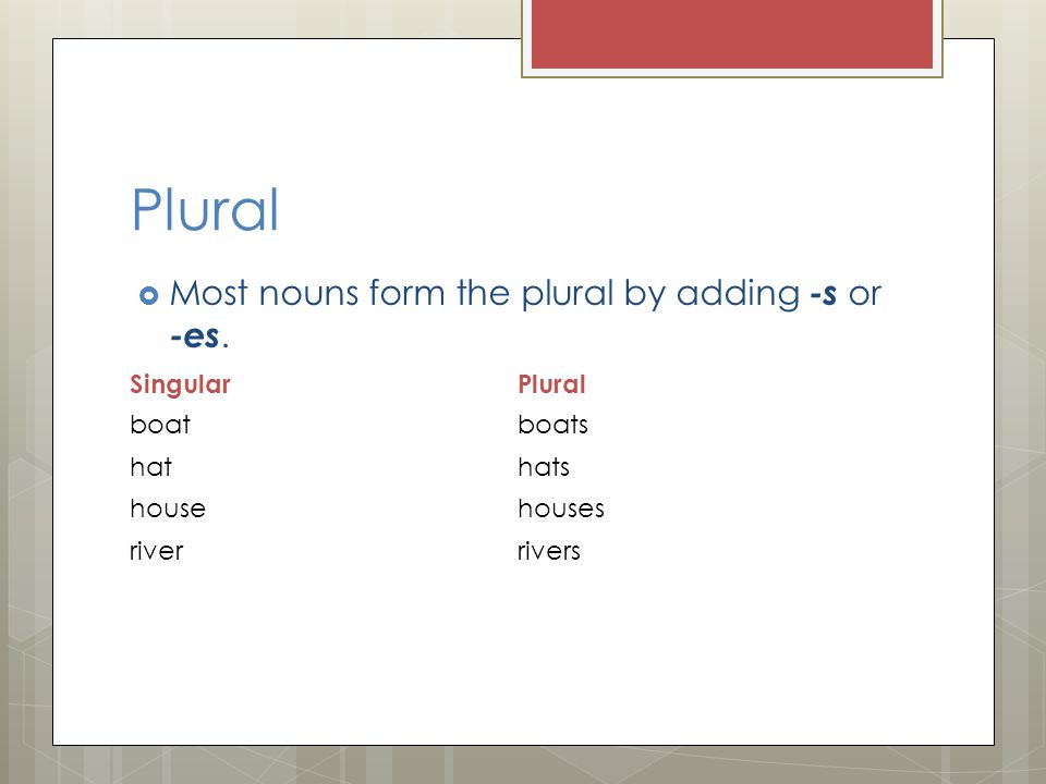 Plural Most nouns form the plural by adding -s or -es. Singular Plural
