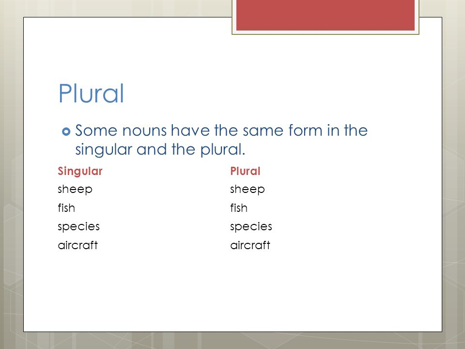 Plural Some nouns have the same form in the singular and the plural.