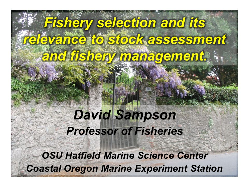 Fishery selection and its relevance to stock assessment and fishery management.