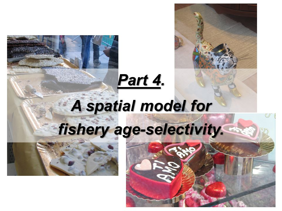 fishery age-selectivity.