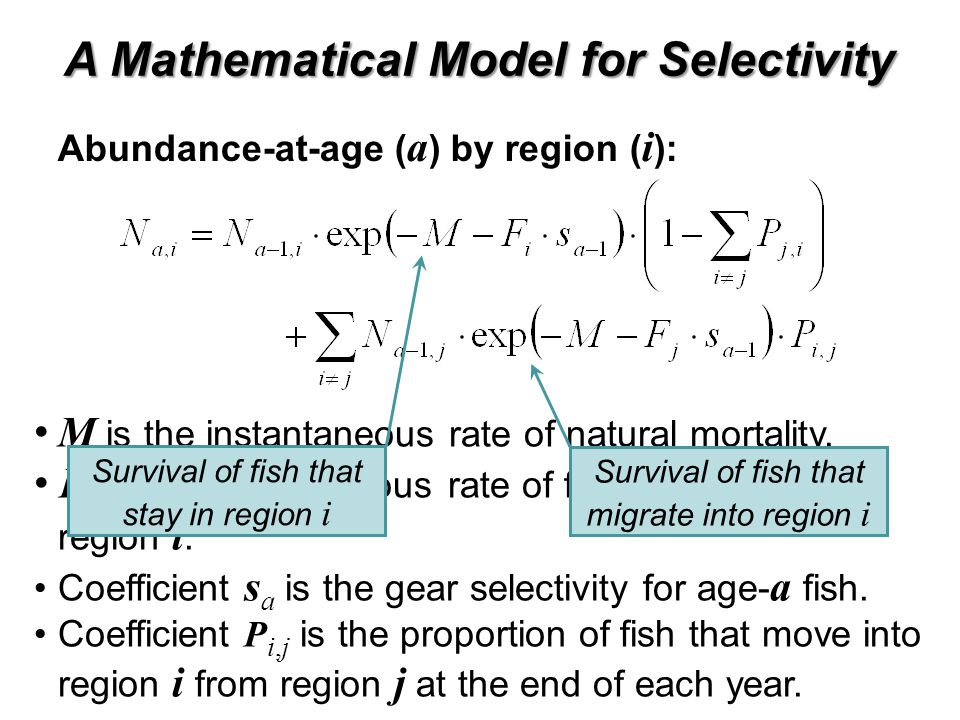 A Mathematical Model for Selectivity