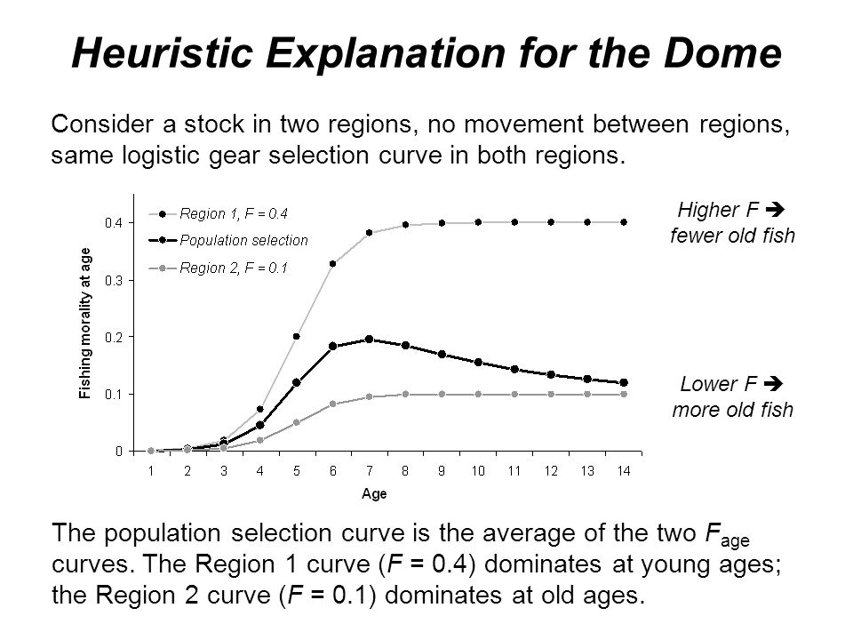 Heuristic Explanation for the Dome