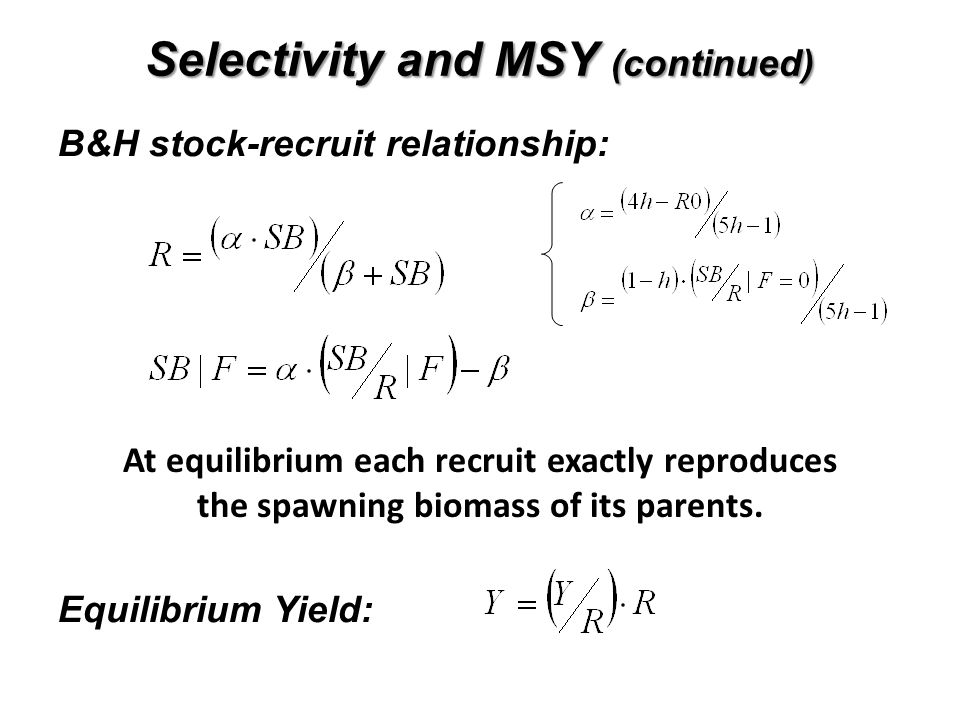 Selectivity and MSY (continued)