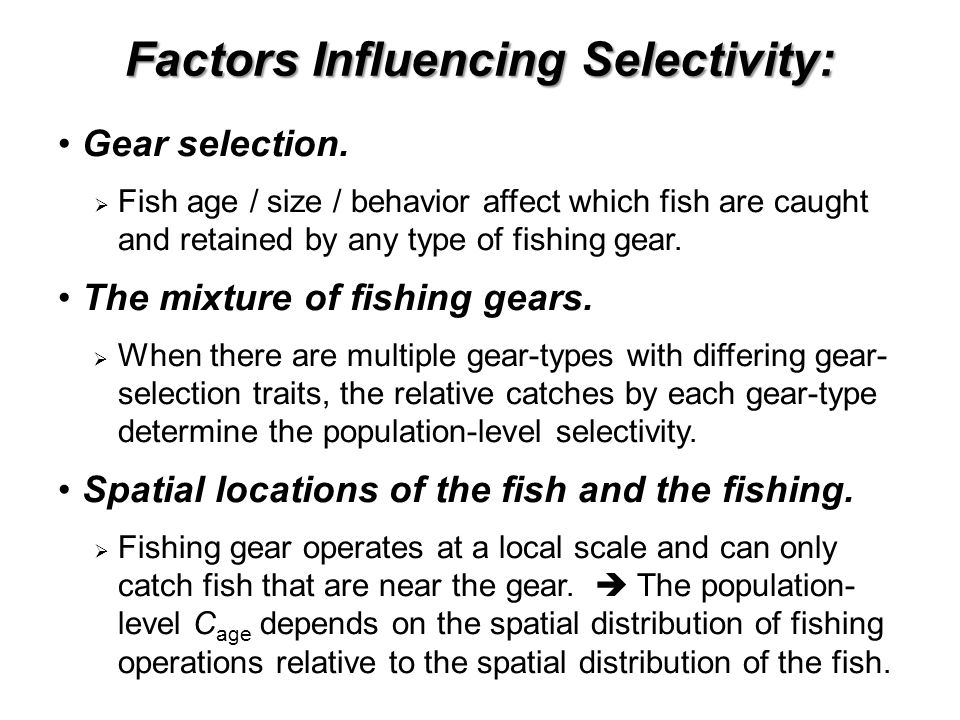 Factors Influencing Selectivity: