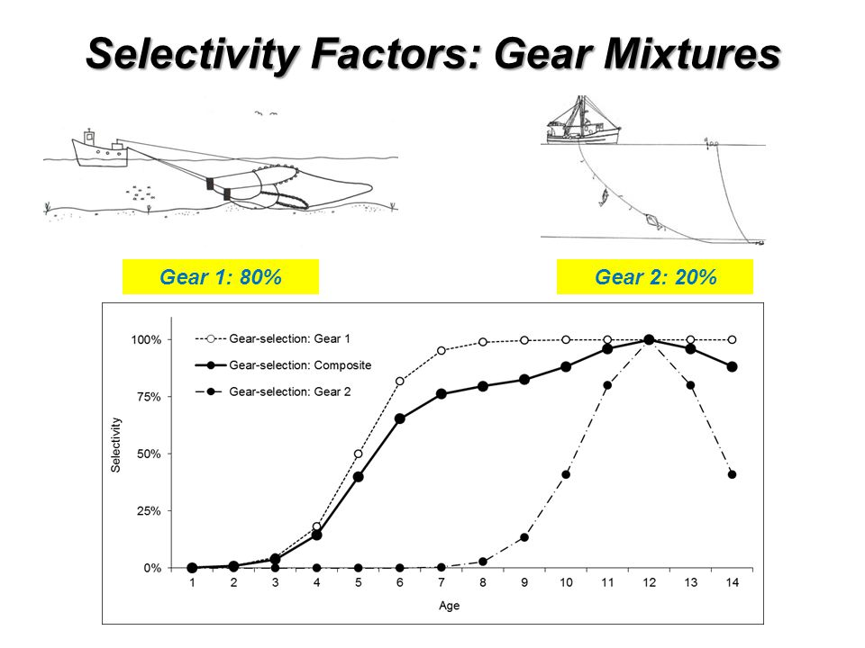 Selectivity Factors: Gear Mixtures