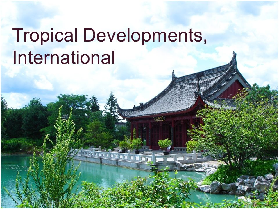 Tropical Developments, International