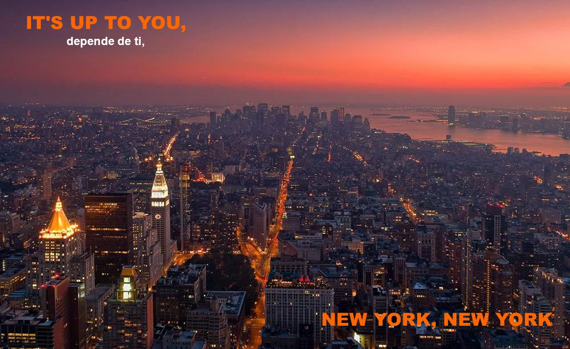 IT S UP TO YOU, NEW YORK, NEW YORK