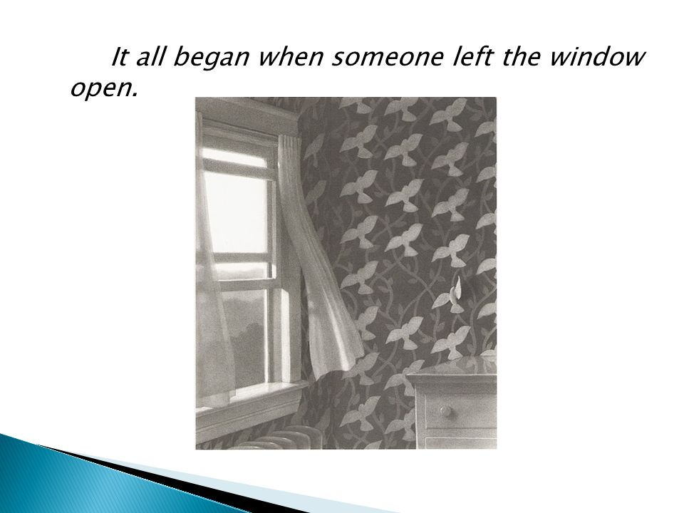 It all began when someone left the window open.