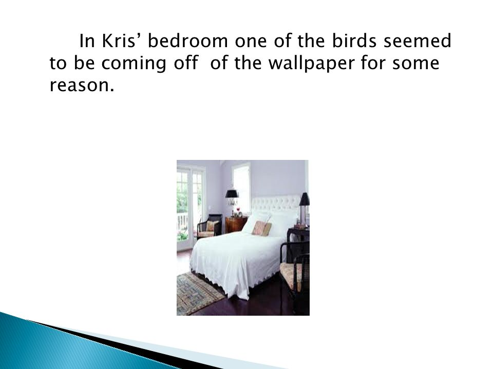 In Kris' bedroom one of the birds seemed to be coming off of the wallpaper for some reason.