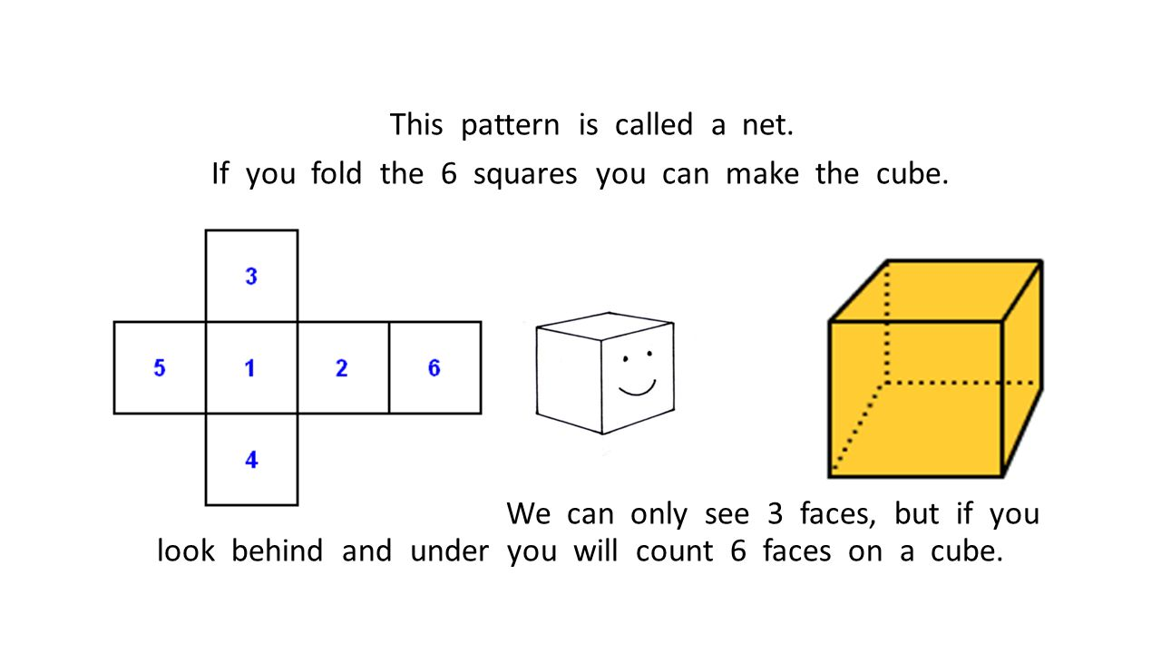 This pattern is called a net