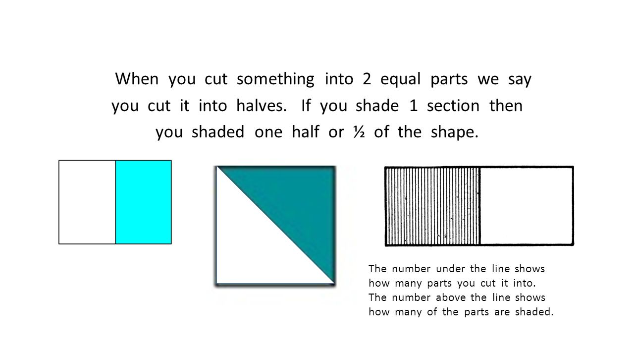 When you cut something into 2 equal parts we say you cut it into halves. If you shade 1 section then you shaded one half or ½ of the shape.