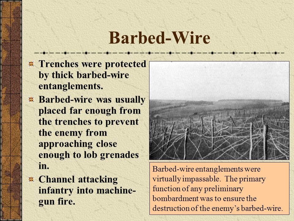 Barbed-Wire Trenches were protected by thick barbed-wire entanglements.