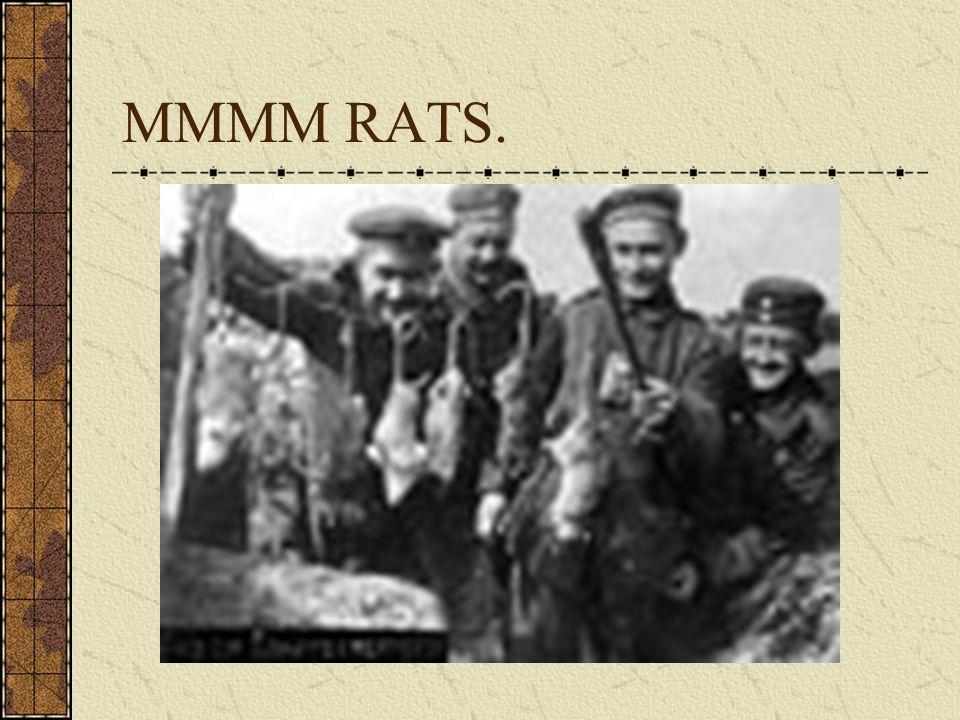 MMMM RATS.