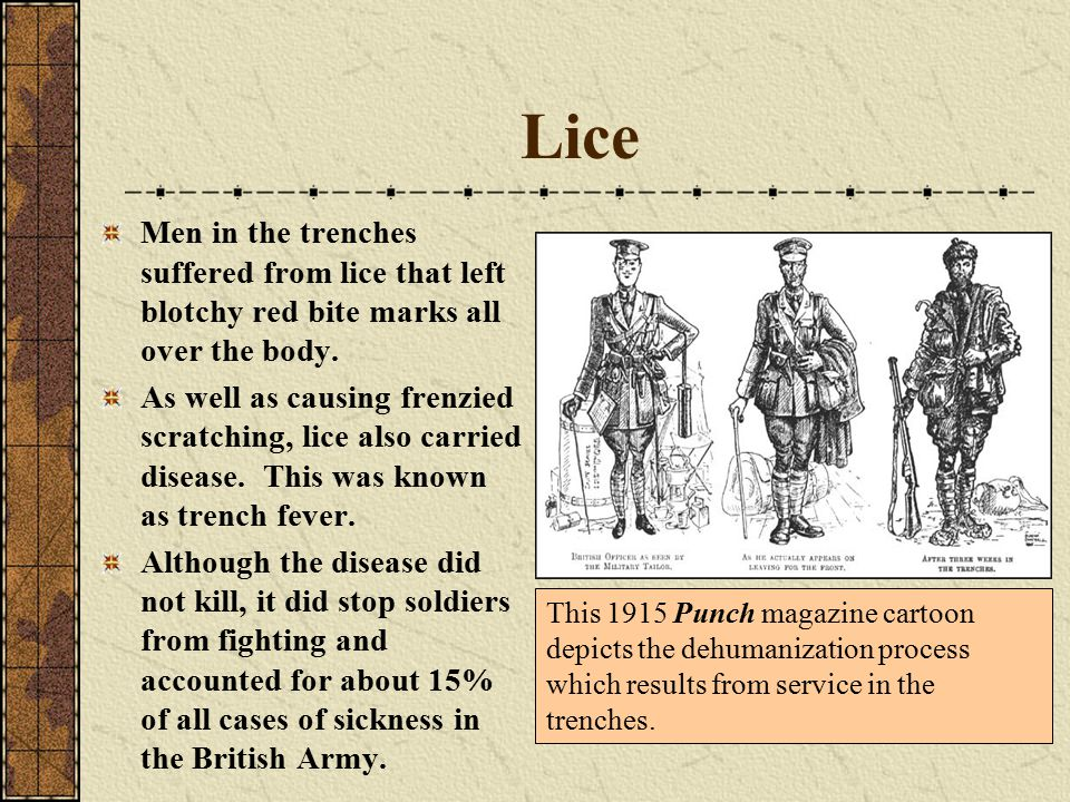 Lice Men in the trenches suffered from lice that left blotchy red bite marks all over the body.