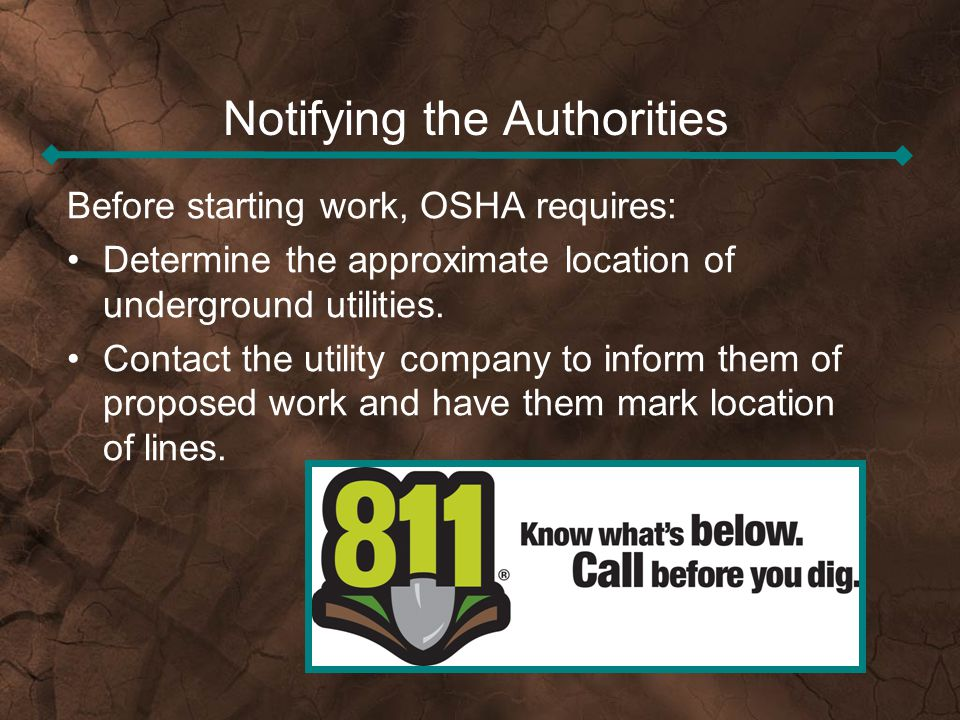 Notifying the Authorities