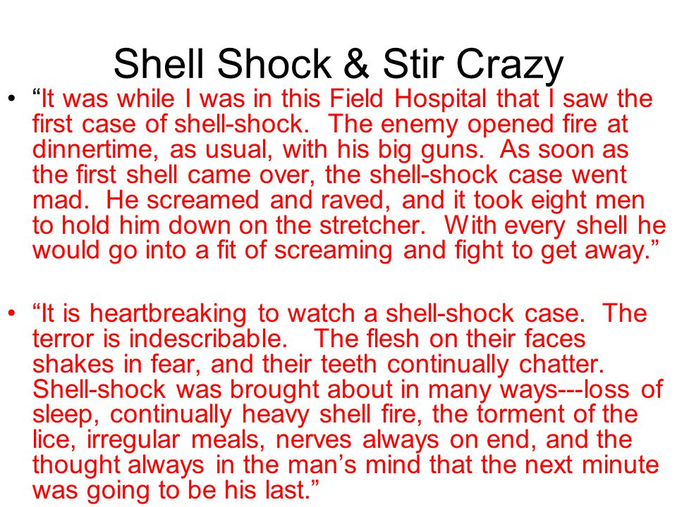 Shell Shock & Stir Crazy
